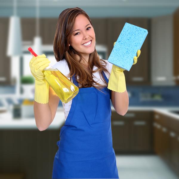 Les experts de l'entretien ménager